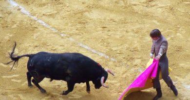 La corrida est un «art» sans humour