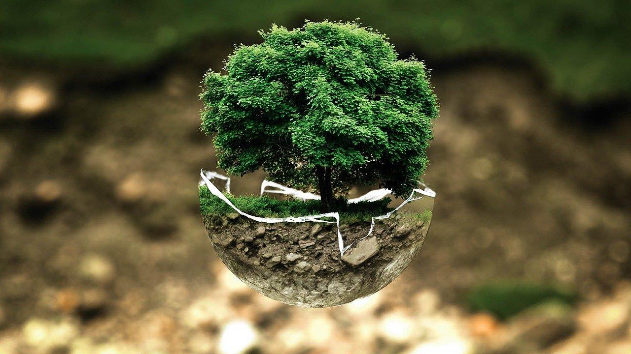 écologie image libre de droit
