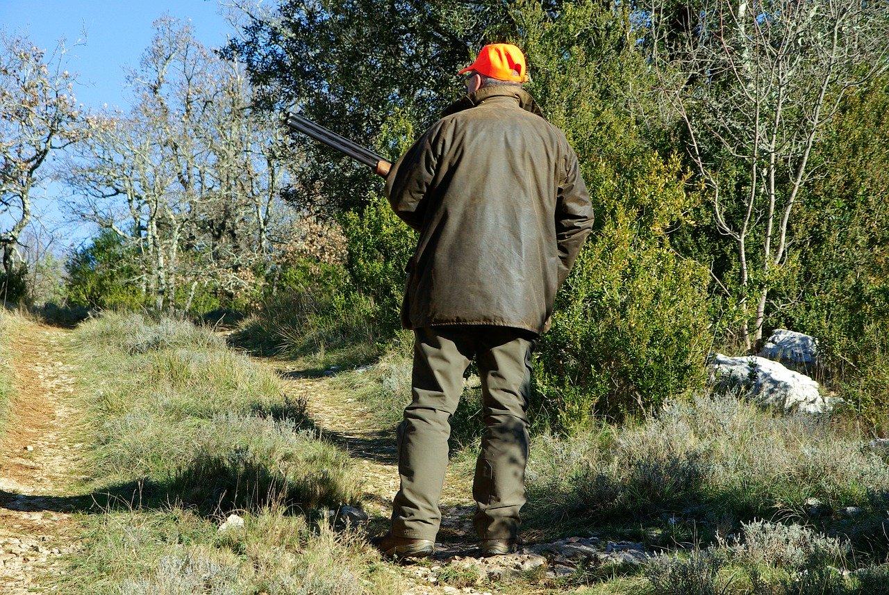 une cagnotte pour acheter une forêt des Aravis et y interdire la chasse